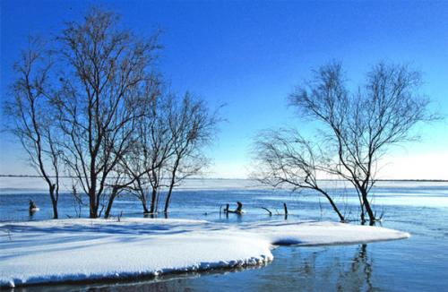 Nanhai wetland scenic offers free admission1