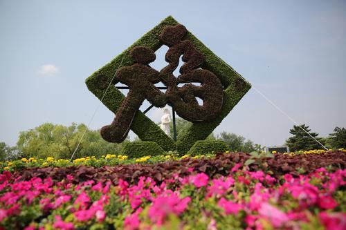 太阳形状花坛设计