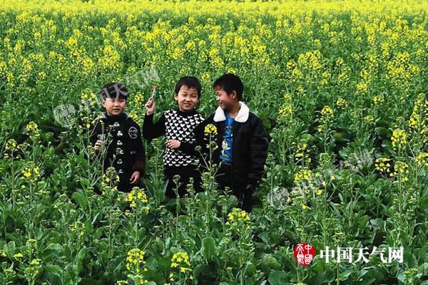 黑吉辽有大到暴雪 南方多地将提前入春